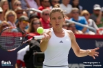 coupe-rogers-halep-kerber-wta-146