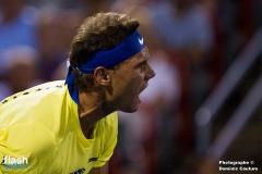 Nadal_shapovolov-100