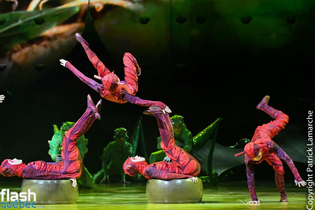 Ovo Cirque du Soleil